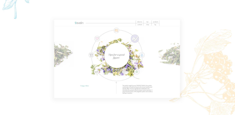 evelin-web-big-3.jpg